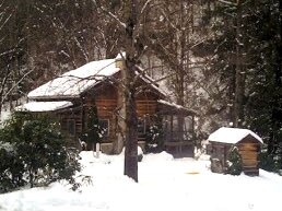 mountains cabin near luxury rest in wilkes rentals rent for hawks county nc leatherwood boone cabins